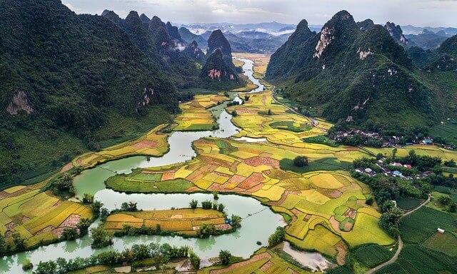 ベトナムの田園景色
